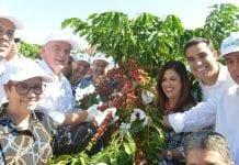 Governador e ministra da Agricultura dão início à colheita do café no Espírito Santo